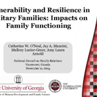 Vulnerability and resilience in military families: Impacts on family functioning