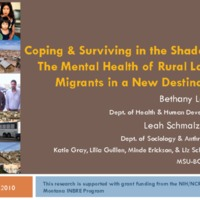 https://www.ncfr.org/sites/default/files/downloads/news/422 - Surviving in the Shadows Latino Migrant and Transnational Families.pdf