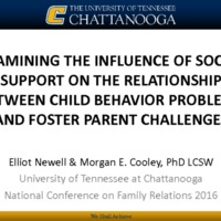 Examining the Importance of Social Support on the Relationship Between Child Behavior Problems and Foster Parent Challenges