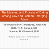 The Meaning and Process of Dating among Gay and Lesbian Emerging Adults